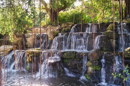 dangling: Cascading waterfall of three stages with dangling roots of trees