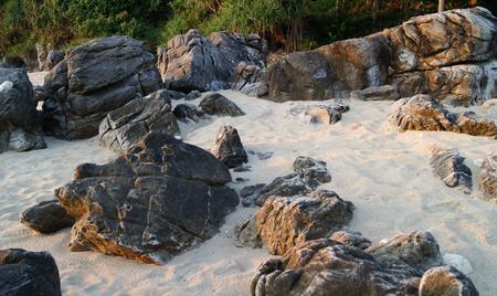 no body: black stones on light sand near the bushes Stock Photo