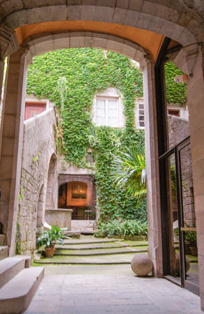 no body: arched entrance and wall overgrown with ivy Stock Photo