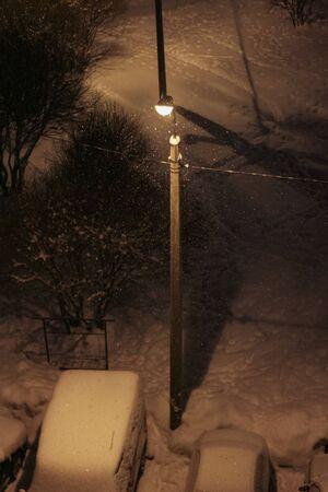 winter evening: Winter evening in the yard.