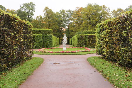 A rainy day in an autumn park.