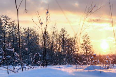 A picturesque winter sunset in the snowy evening fields of fields. Stock Photo