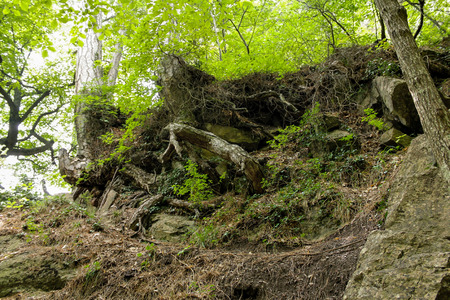 Forest and mountain landscapes in the Crimea at the Uchan-Su waterfall. Banco de Imagens