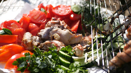 Beautiful juicy still life on a plate of fresh vegetables and grilled chicken. HD Imagens