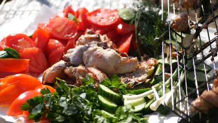 Tasty and juicy lunch on the nature of fresh vegetables and chicken barbecue. HD
