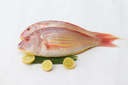 Close up view of fresh Pink Perch (thread finned Bream) Decorated with lemon slice,Orange slice on a White Background,Selective focus.