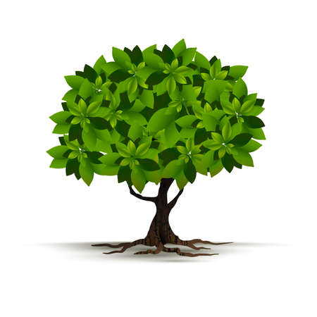 Illustration Realistic Tree Isolated on White Background - Vector Vector Illustration
