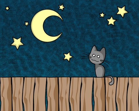 Cat in the night looking at the moon and stars