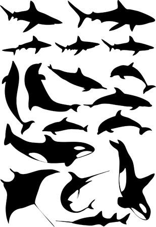 Ocean animals - 17 vector illustrations Vector