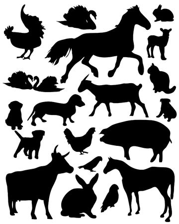 domestic goat: Set of vector illustrated domestic animals silhouettes