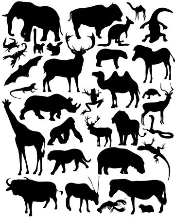 illustrated wild animals silhouettes Vector