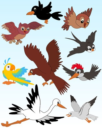 Set of illustrated birds - kid style Vector