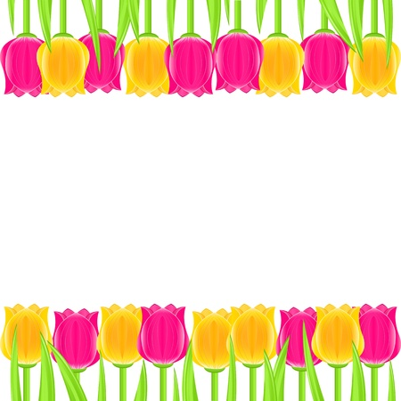 Bright Colorful Tulip Frame. Vector Floral Card Vector
