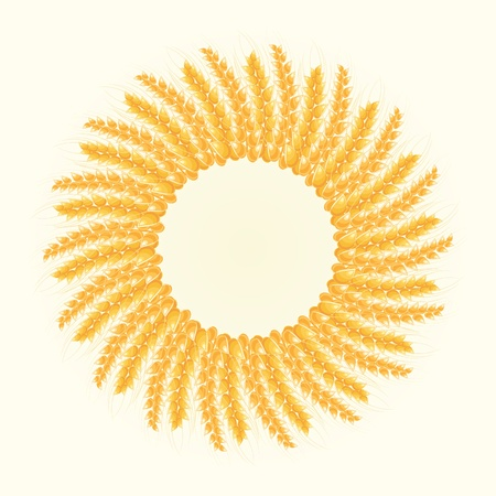 Wheat Round Frame. Harvest Conceptual Illustration Vector