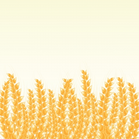 Wheat Banner or  Post Card with Place for Text Stock Vector - 20059821
