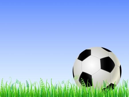 Soccer ball on green grass. Vector Football Illustration