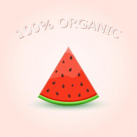 style: 100% Organic Watermelon Scheibe auf hellem Hintergrund. Vector Illustration