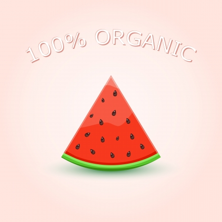 100% Organic Watermelon Slice on Light Background. Vector