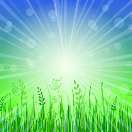 Green Grass Background over Blue Sky. Vector Illustration Stock Vector - 20069460