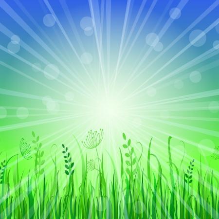 Green Grass Background over Blue Sky. Vector Illustration Stock Vector - 20069460
