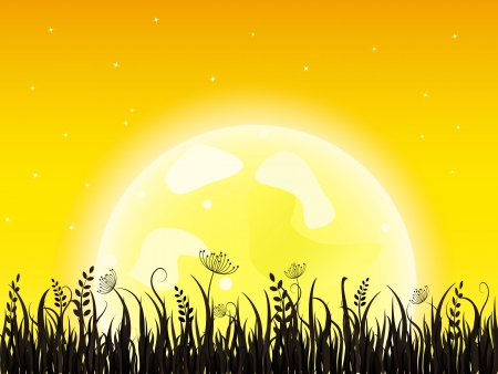 Huge yellow moon with dark grass meadow. Night Vector illustration. Stock Vector - 20069449