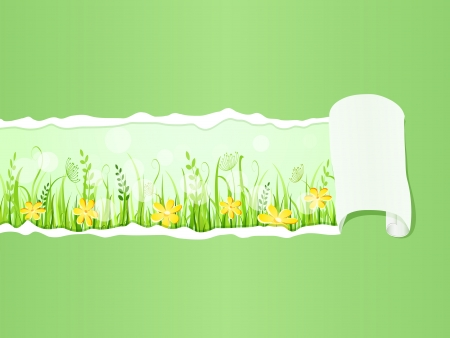 Beautiful Green Grass Meadow under Ripped Paper. Floral Vector Illustration of Grass at Lawn With Blue Sky Stock Vector - 20069430