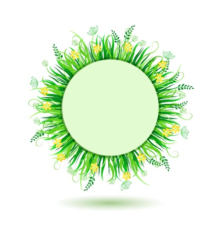 eco notice: Beautiful Green Round Frame. Vector Illustration of Grass in Circle Isolated on white Background