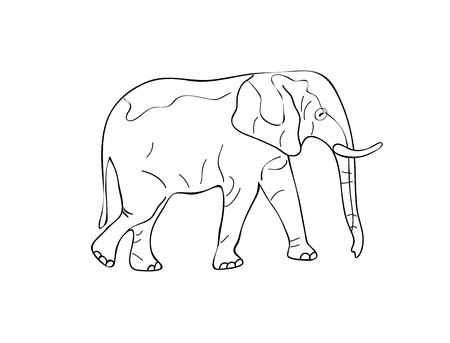 Standing Elephant Sketch. Black White Vector Illustration Vector