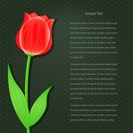 Dark Invitation Card with Single Flower - Red Tulip  Vector Floral Background Vector