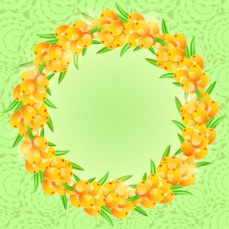 sappy: Card with Round Frame from Orange Sea-buckthorn Berries on Green Background. Vector Illustration Illustration