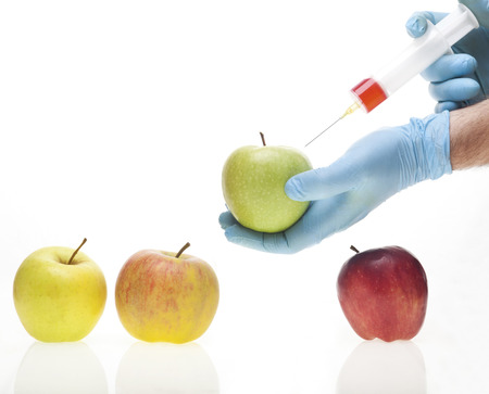 Genetic experiment with four different sorts of apples photo