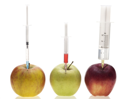 Genetic experiment with three different sorts of apples photo