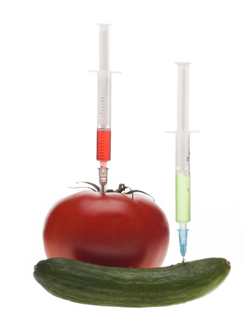 Genetic experiment with tomato ang cucumber  photo