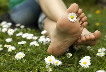 Feet in grass on meadow with chamomile. Banque d'images
