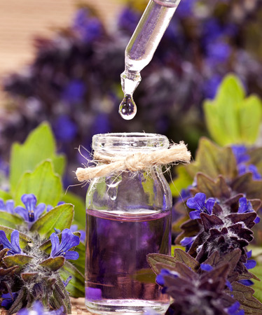 essential oil: Spa background with violet flowers and glass vial with essential oil.