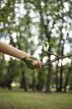 Environment concept. Handshake between human hand and tree.