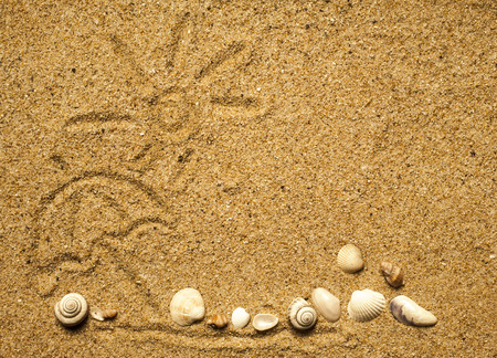 Sun and shells on sand on beach holiday background. Stockfoto