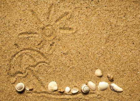 Zon en schelpen op zand op strandvakantie achtergrond.