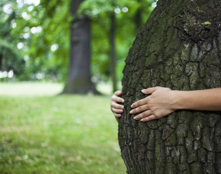 Environment concept. Human hands hugging a tree that looks like the belly of a pregnant woman. Standard-Bild