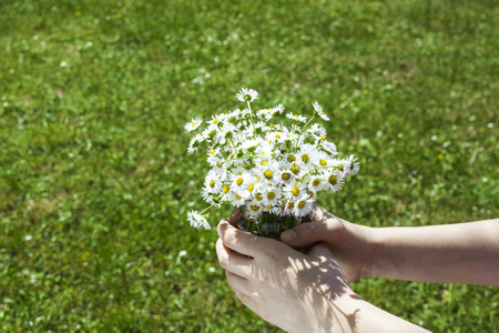 Childrens hands with a bunch of flowers in them on green grass background.