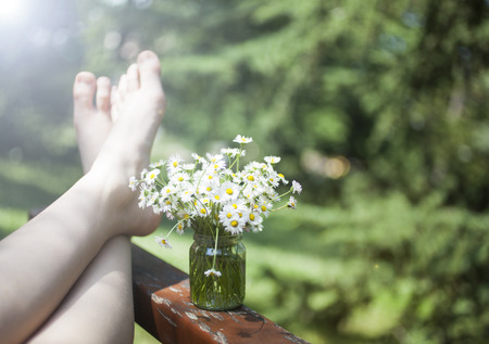 garden flower: Bunch of beautiful camomile flowers and human feet on green bokeh background.