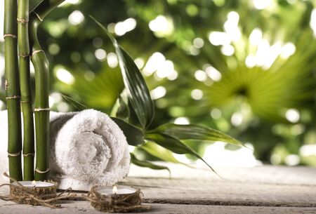 Grean bamboo leaves, towel an candle on a tropical leaves background