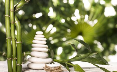 Grean bamboo leaves over white zen stones pyramid on tropical leaves background