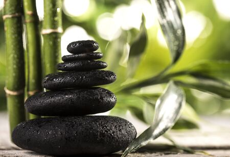 Grean bamboo leaves over black zen stones pyramid on tropical leaves background