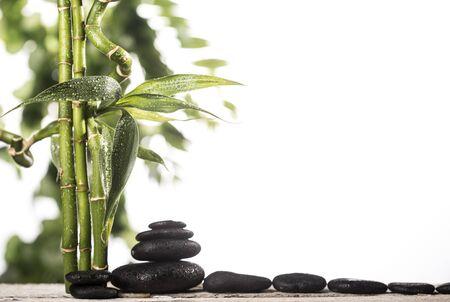 Grean bamboo leaves over black zen stones pyramid on white background Stock fotó