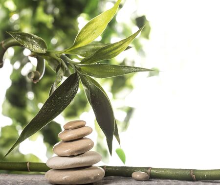 Grean bamboo leaves over white zen stones pyramid on white background
