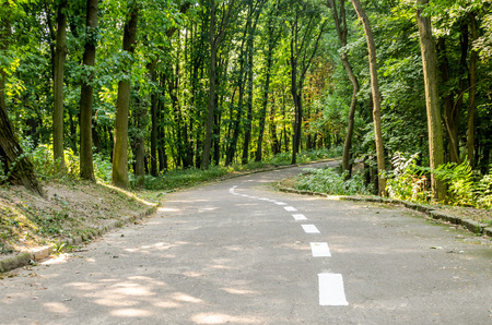 pilgrim journey: Paved path for walking and jogging among the trees with white paint marking pointer in the park Znesinnya in Lviv on Kaiserwald Stock Photo
