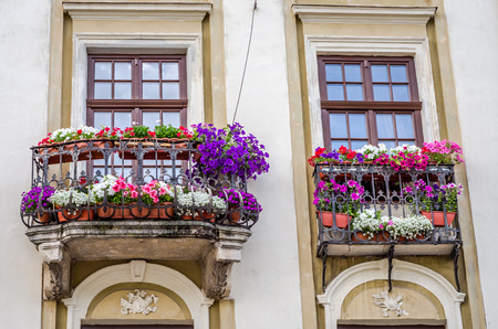 Balcony with blooming flowers in the architectural historic building in the center of Lviv
