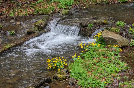 Kaskaden von reinem Bergfluss