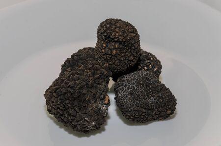 Raw black truffles on a plate